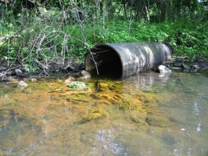 Algae Blooms and Nonpoint Source Pollution
